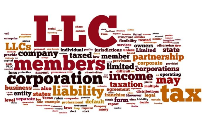 LLC Organizer FAQ