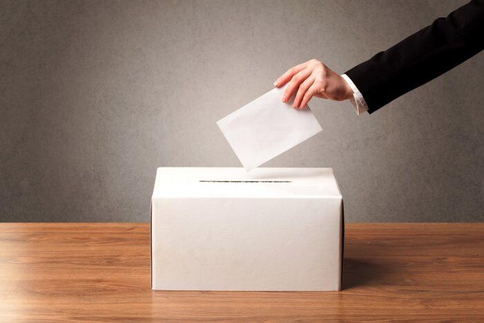 board member election process