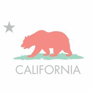 california_llc